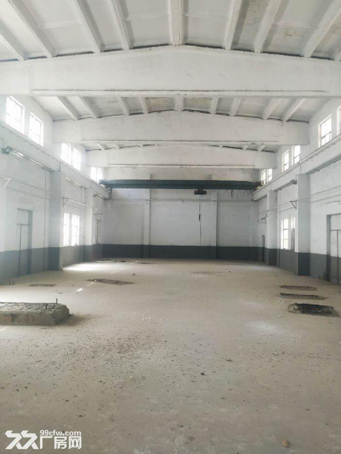 罗村工业园厂房出租-图(4)