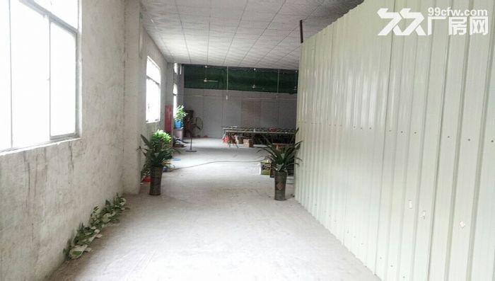 二类用地!鹤山共和镇工业园一楼4000方出租-图(1)
