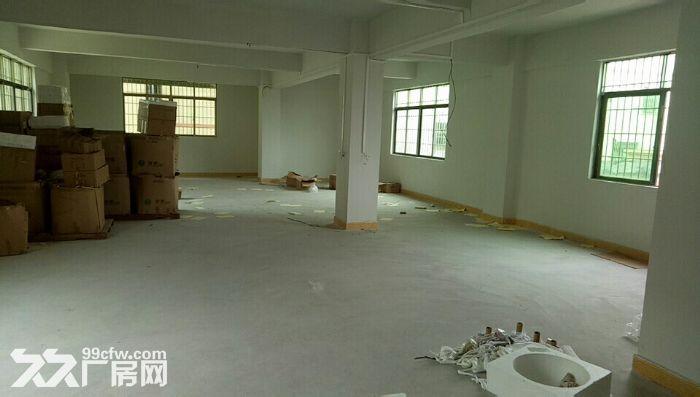 二类用地!鹤山共和镇工业园一楼4000方出租-图(3)
