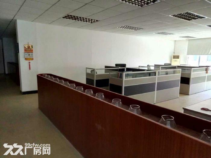 深圳南山大型标准厂房出租-图(6)