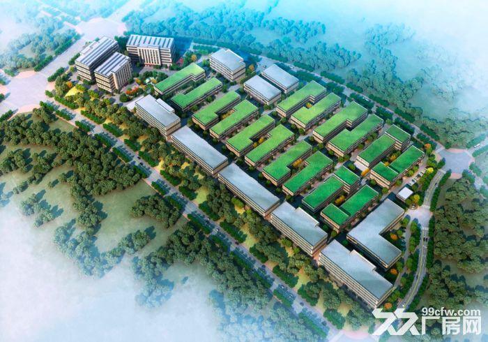 出售金西开发区一手全新厂房多种面积-图(1)