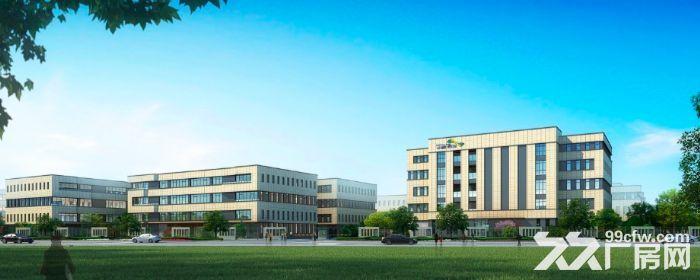 出售金西开发区一手全新厂房多种面积-图(2)