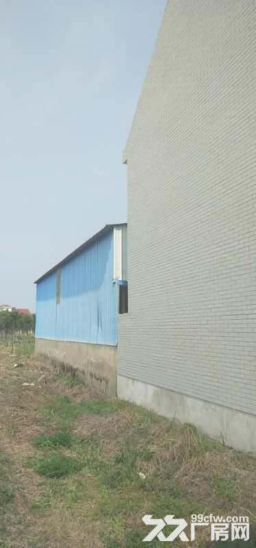 崇明北渡港桥靠近大马路低价厂房出售-图(3)