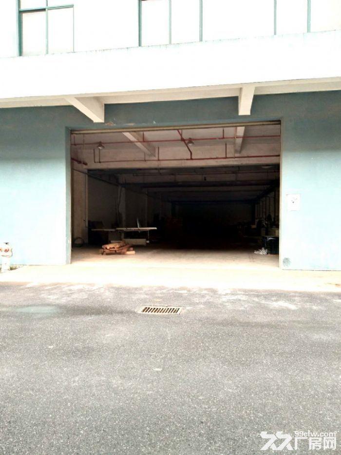 北软莫干山路附近一楼仓库厂房便宜出租大车进出方便层高高-图(2)