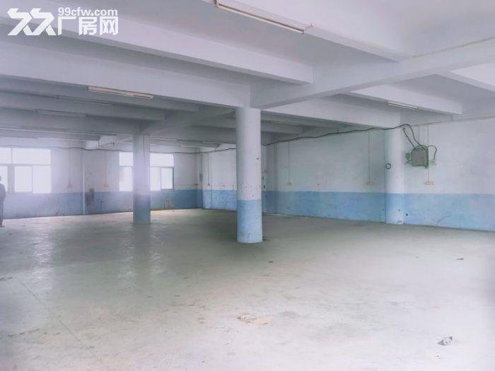 丰泽区少林路500−1000平厂房出租-图(1)