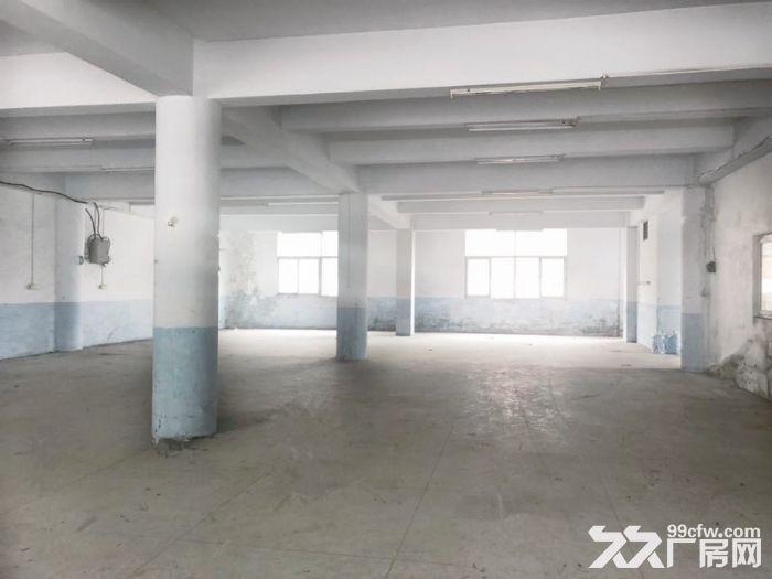 丰泽区少林路500−1000平厂房出租-图(2)