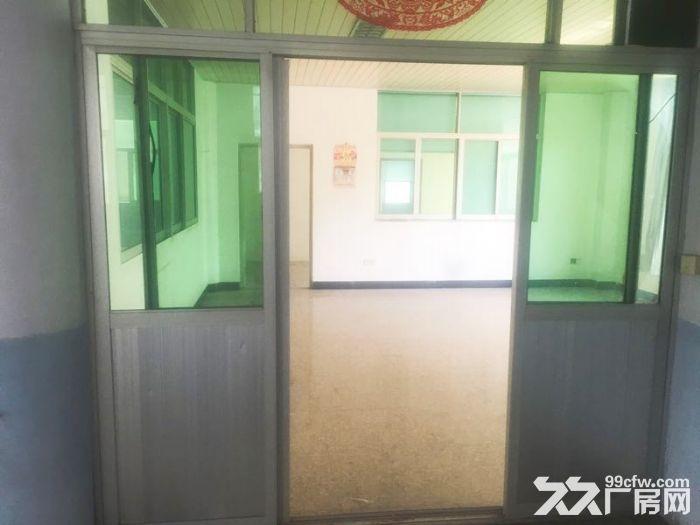 丰泽区少林路500−1000平厂房出租-图(4)