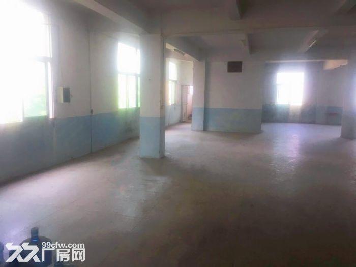 丰泽区少林路500−1000平厂房出租-图(5)