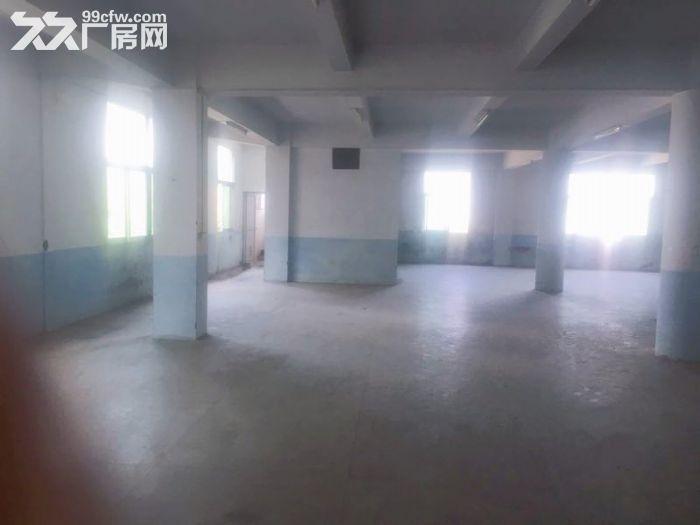 丰泽区少林路500−1000平厂房出租-图(6)