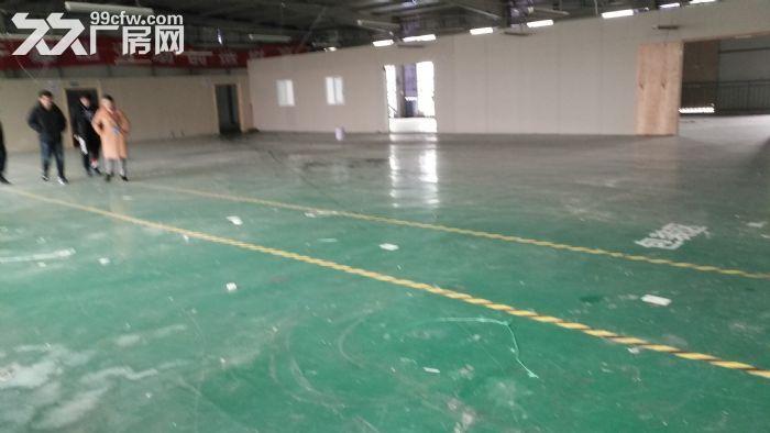 温江库房出租二三楼有货梯可做轻加工1000㎡-图(3)