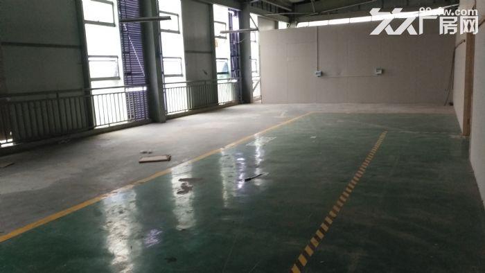 温江库房出租二三楼有货梯可做轻加工1000㎡-图(4)