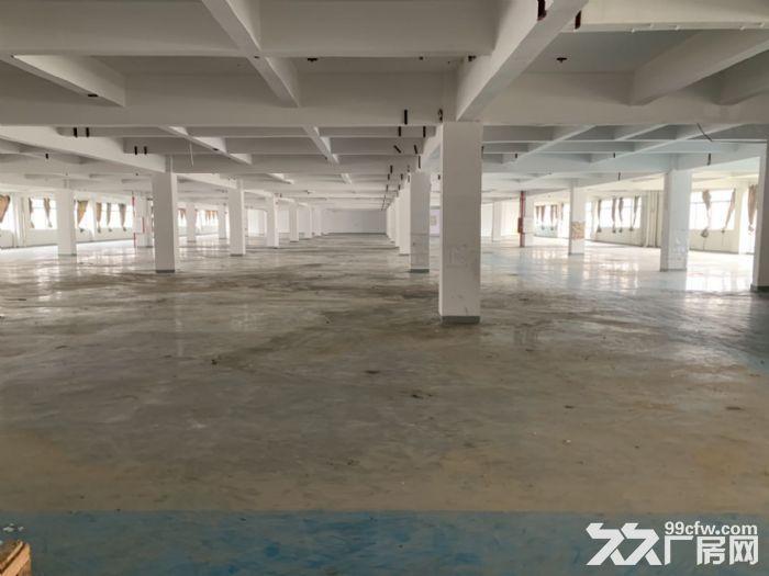 江海高新工业园4000方厂房出租带装修带办公室-图(3)