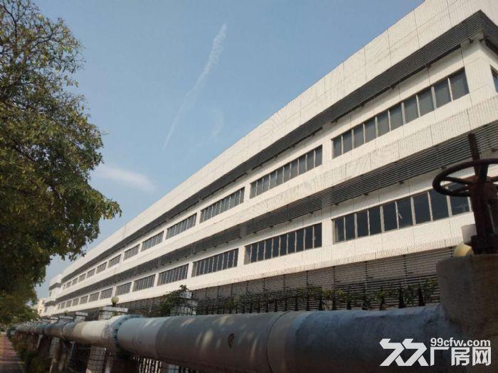 漳州港独门独院钢结构15000平方出租-图(1)