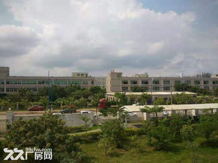 漳州港独门独院40000平方标准厂房出租-图(1)