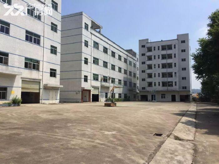 龙岗北通道6000平独院厂房出租,可分租业主直租-图(4)