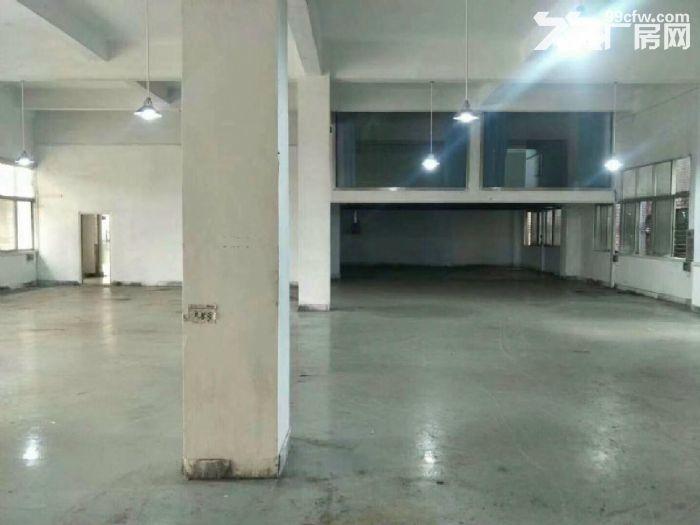 带豪装办公室带地坪漆!南山西丽新出一楼900平厂房-图(3)