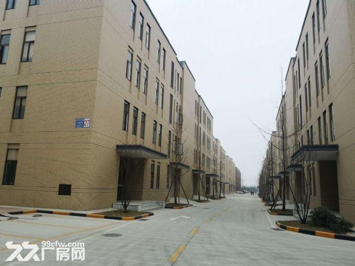 50年产权大小可分全新厂房招租出售可按揭-图(2)