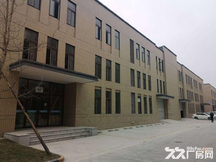 50年产权大小可分全新厂房招租出售可按揭-图(3)