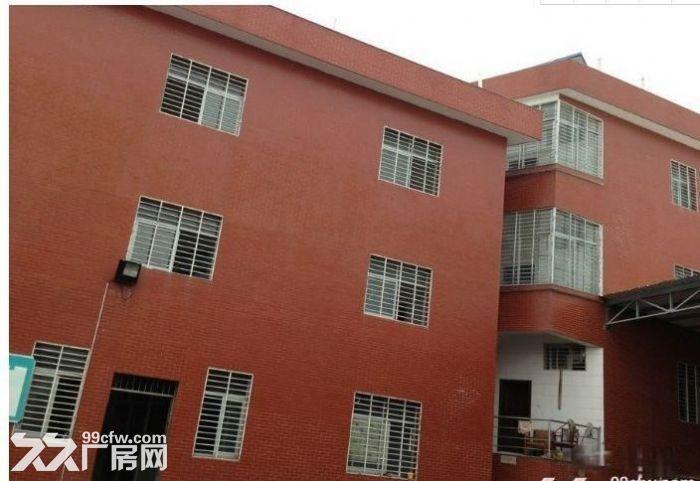 北峰普贤路旁1000㎡挑高钢结构厂房出租-图(1)
