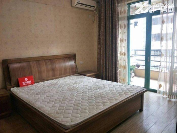 丰泽市区悦华酒店旁阳光巴黎3房125带前后双阳台-图(3)