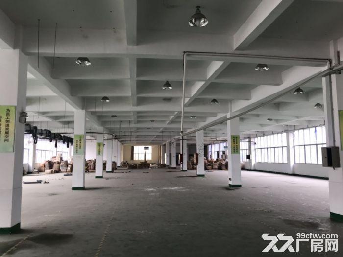 高新区高陂片区多个厂房整栋出租-图(3)