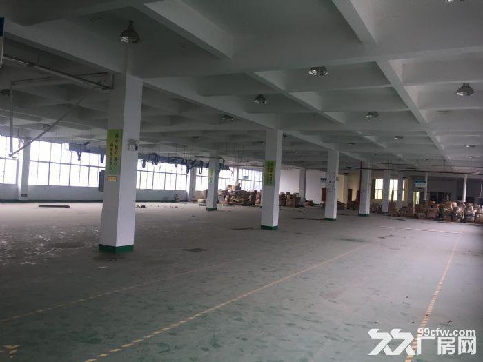 高新区高陂片区多个厂房整栋出租-图(4)