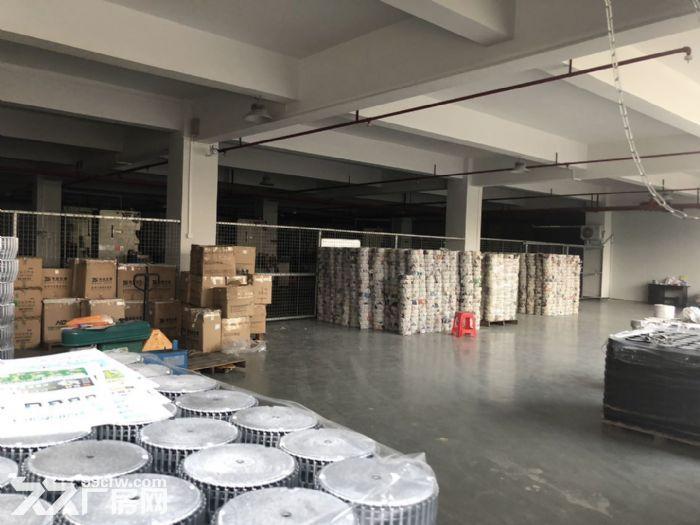 新会区睦州新沙楼上2600方厂房出租可分租-图(3)