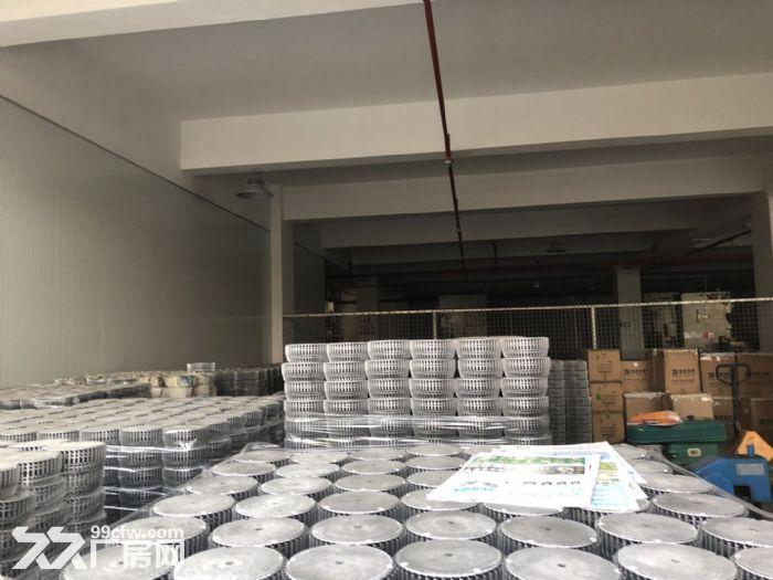 新会区睦州新沙楼上2600方厂房出租可分租-图(2)