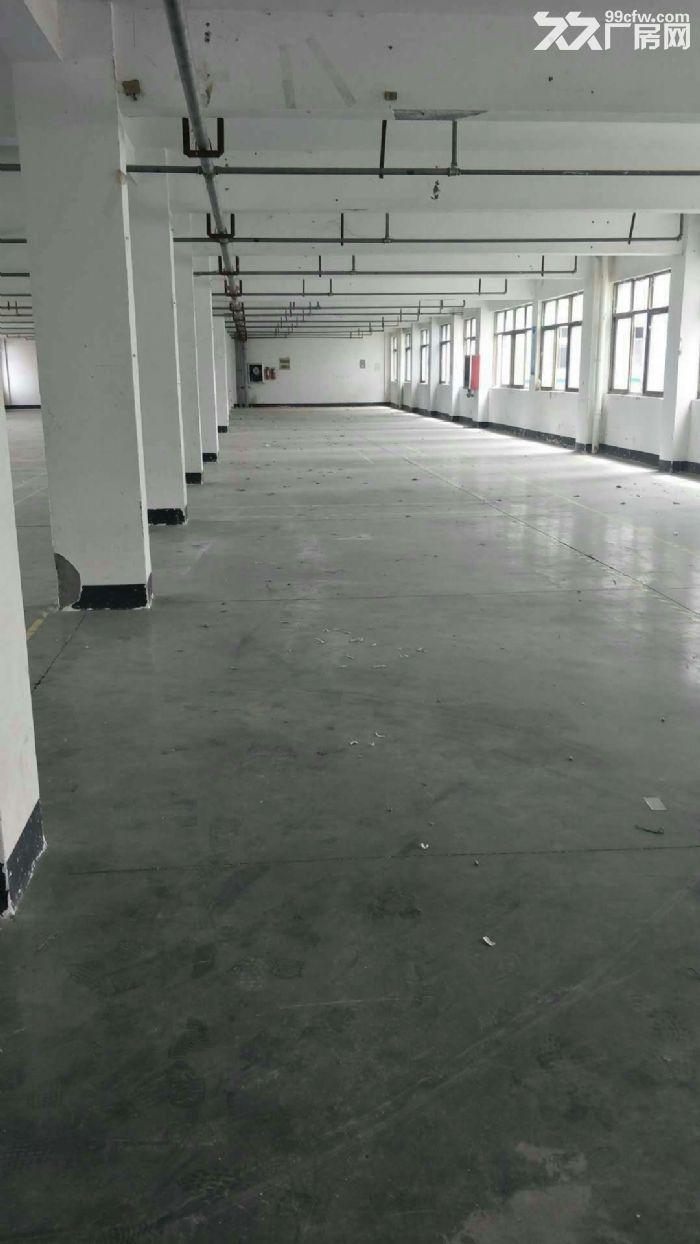 东阳市2000平米厂房出租-图(2)
