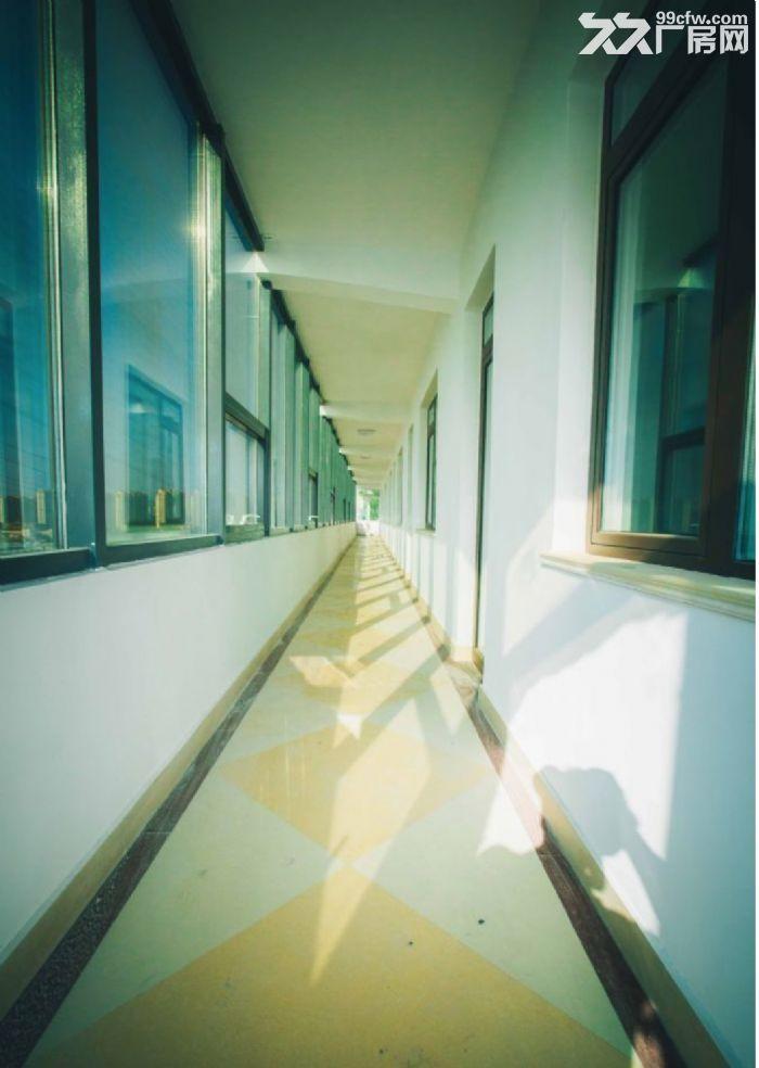 李沧出租1600㎡−养老院−公寓−办公楼-图(3)