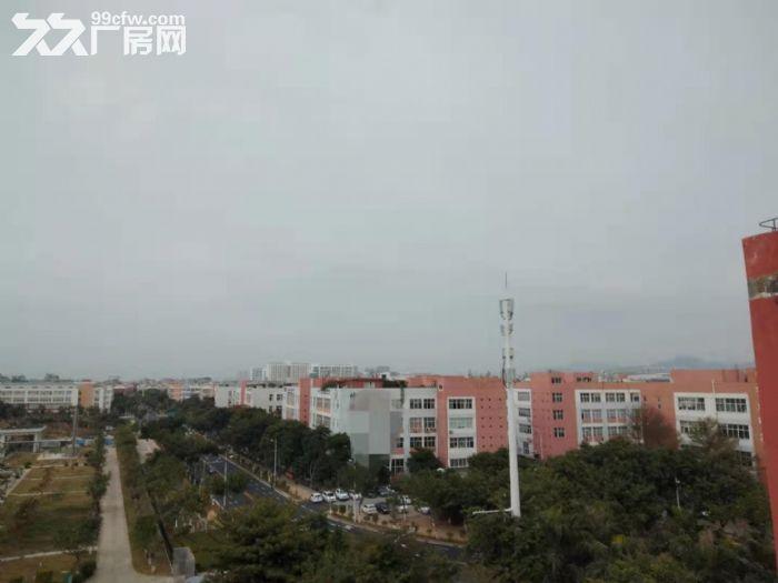 火炬园40000平方标准厂房招租-图(1)