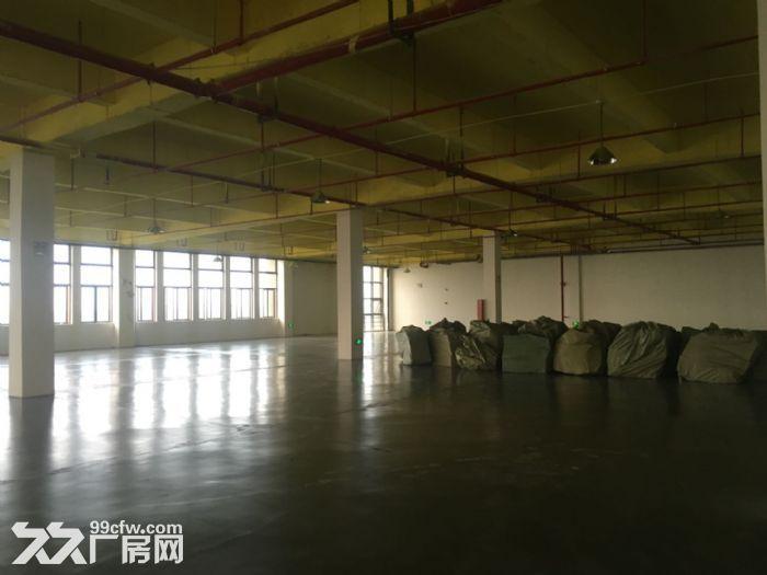 苏州相城区3E产业园厂房/仓库出租-图(4)