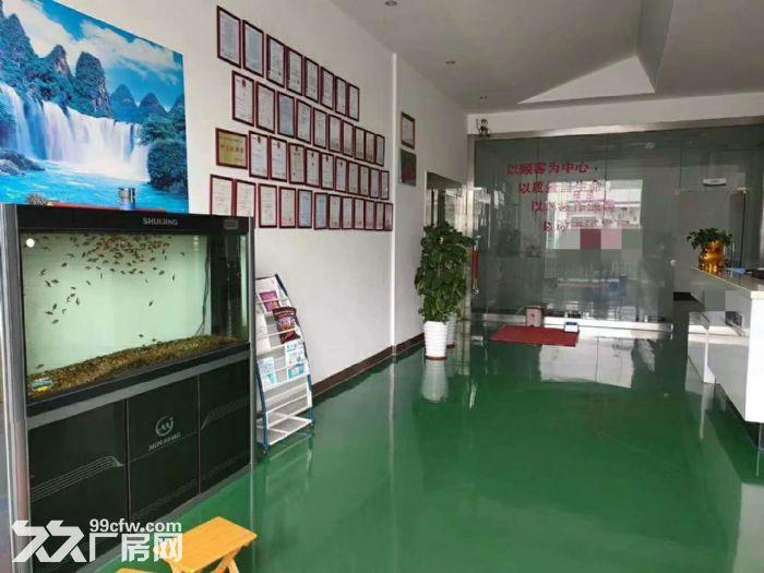 清溪新出标准厂房2250平,无尘车间带流水线台-图(2)
