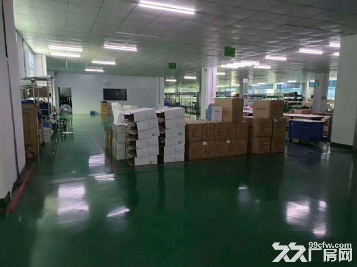 清溪新出标准厂房2250平,无尘车间带流水线台-图(4)