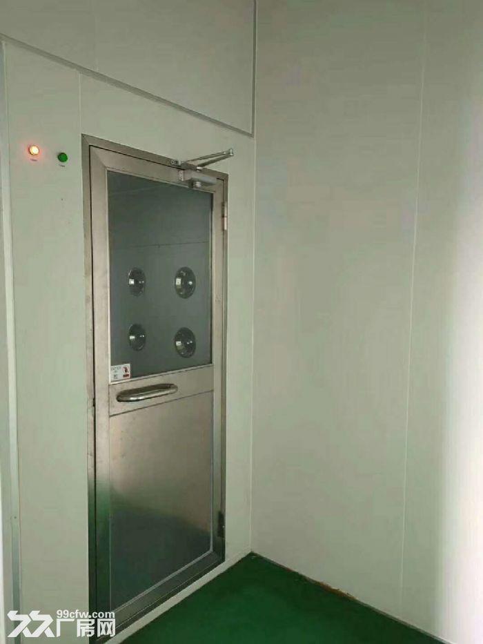 清溪新出标准厂房2250平,无尘车间带流水线台-图(3)