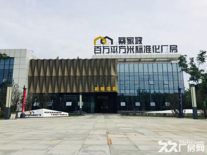 蔡家坡百万平米标准化厂房-图(1)