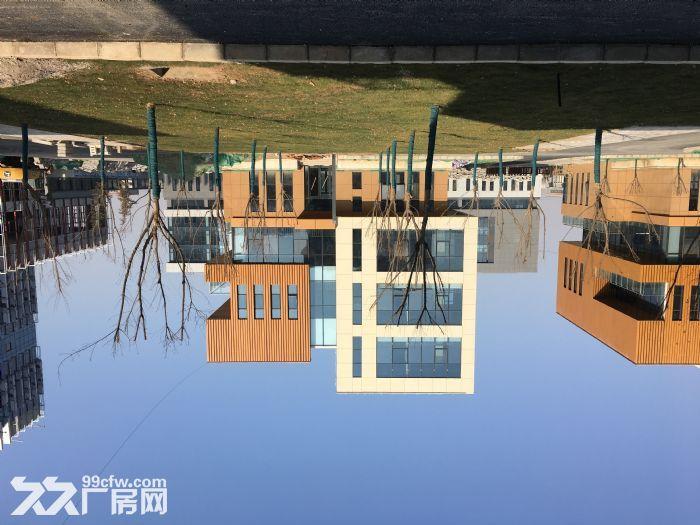 蔡家坡百万平米标准化厂房-图(6)