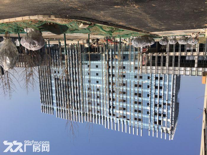 蔡家坡百万平米标准化厂房-图(7)