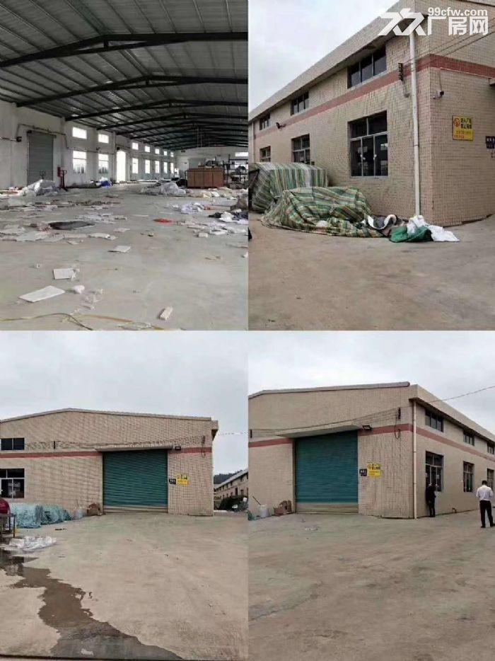 清溪珍珠棉泡沫塑胶废品仓库独院钢结构厂房出租-图(1)