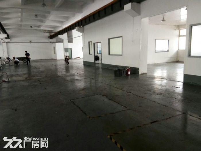 马陆工业区500平米标准厂房仓库出租,高度4.5米-图(1)