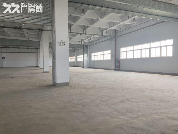 卸货平台!消防喷淋!一楼3000平园区胜浦机械厂房-图(2)