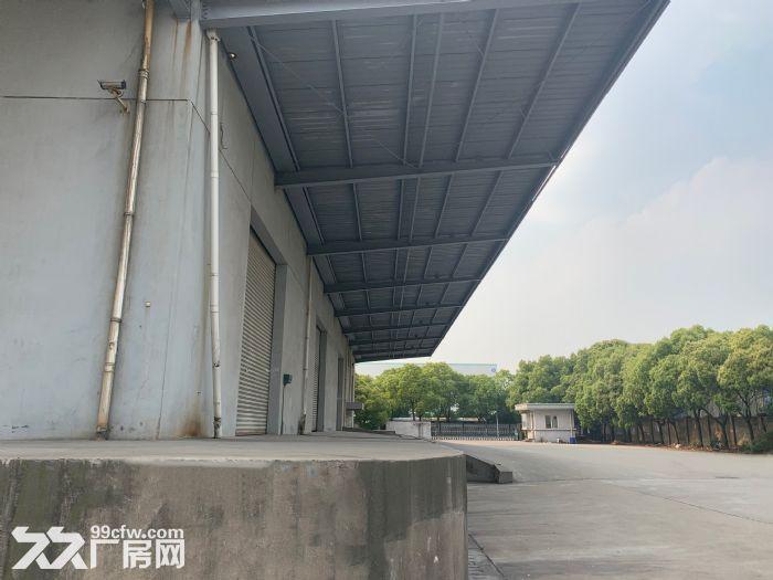 卸货平台!消防喷淋!一楼3000平园区胜浦机械厂房-图(5)