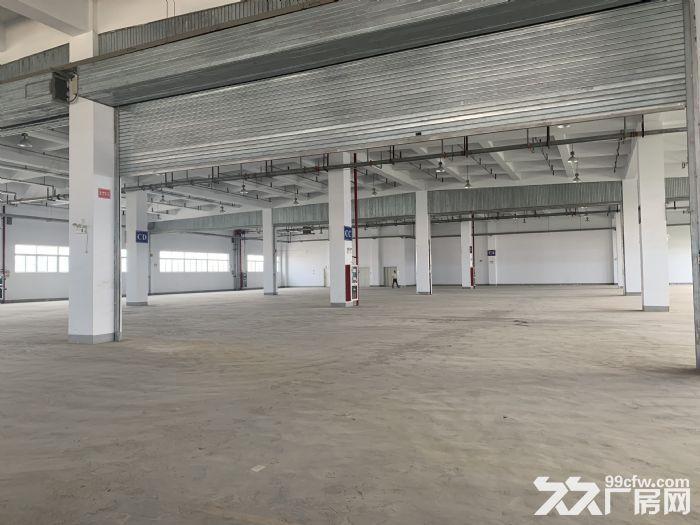 卸货平台!消防喷淋!一楼3000平园区胜浦机械厂房-图(8)