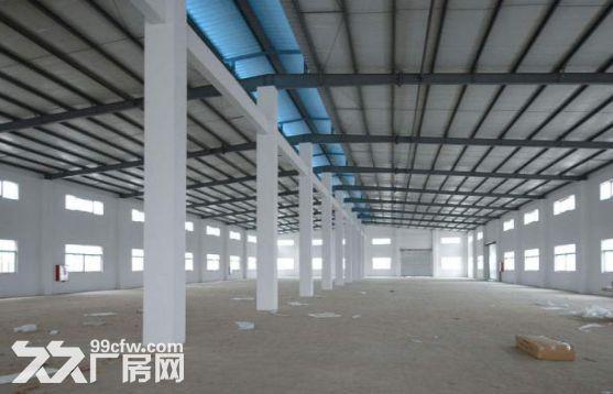 大江东6000方单层钢结构厂房、层高11米,可以装行车,价格25可谈-图(1)