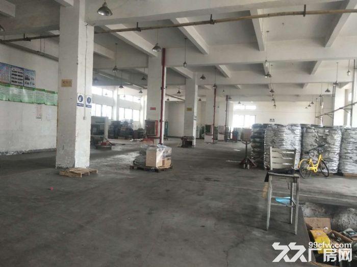 东浮独栋标准厂房7300平出租,性价比高-图(3)