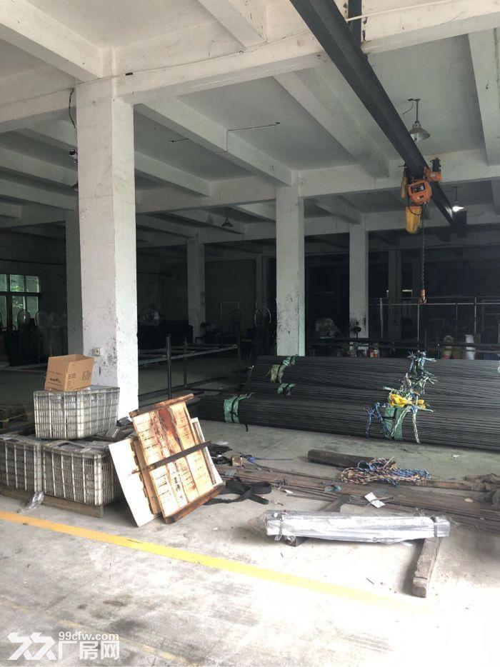 东浮独栋标准厂房7300平出租,性价比高-图(1)