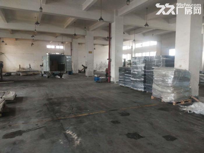 新阳东孚工业区一楼900.1000.1800平出租-图(2)