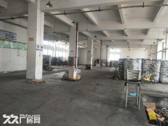 新阳东孚工业区一楼900.1000.1800平出租-图(3)