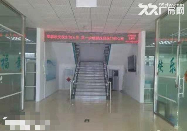 个人厂房急招租,济南市中区大型厂房仓库招租,3000平以上都可分租-图(5)