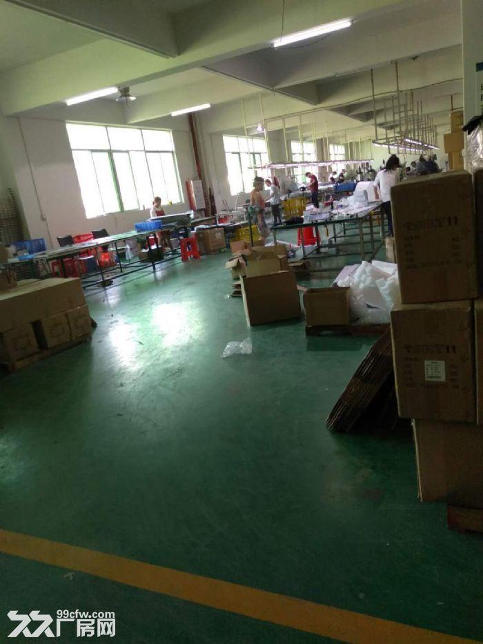 江海高新区2楼1200方厂房出租带精装修办公室-图(3)